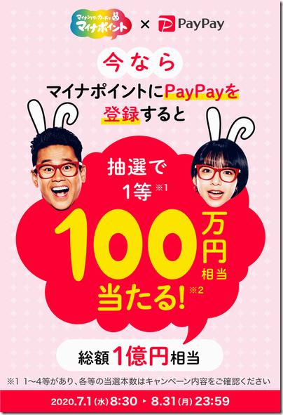 paypay_naiyou
