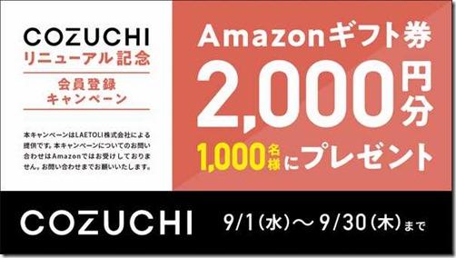 cozuchi_cp1